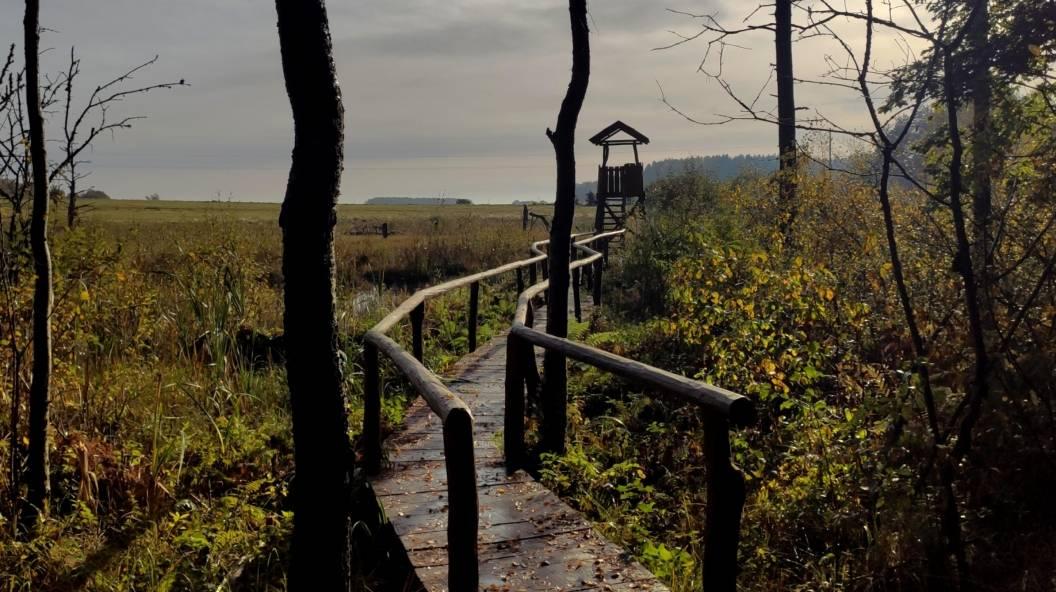Vietinio turizmo naujienos: 26 idėjos kelionėms Lietuvoje šiemet